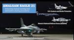 AMALGAM EAGLE-21 image
