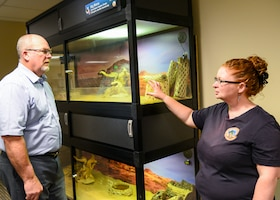 Herb Roraback, chief of Environmental Management and Misty Hailstone, a biologist in EM, discuss the scratches that Kali, the desert tortoise, left on the walls of a terrarium in EM, where she was kept briefly to recuperate after being hit by a car. (Air Force photo by Gary Hatch)