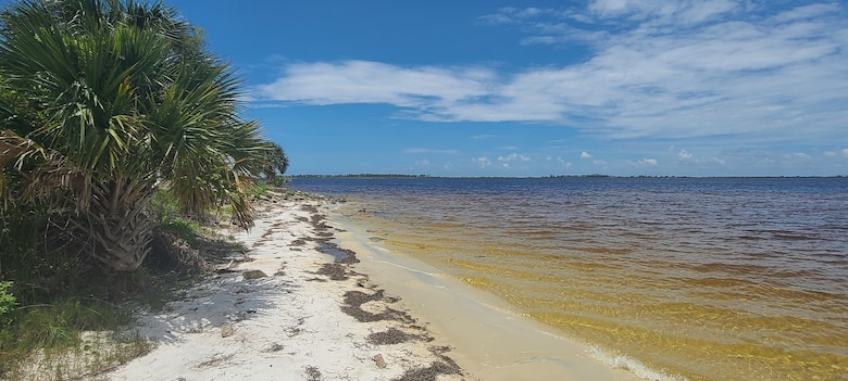 Photo of shore line of Tyndall AFB