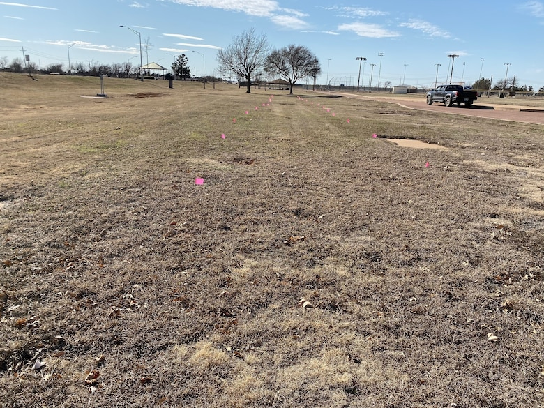 grass with flags where trees will be planted