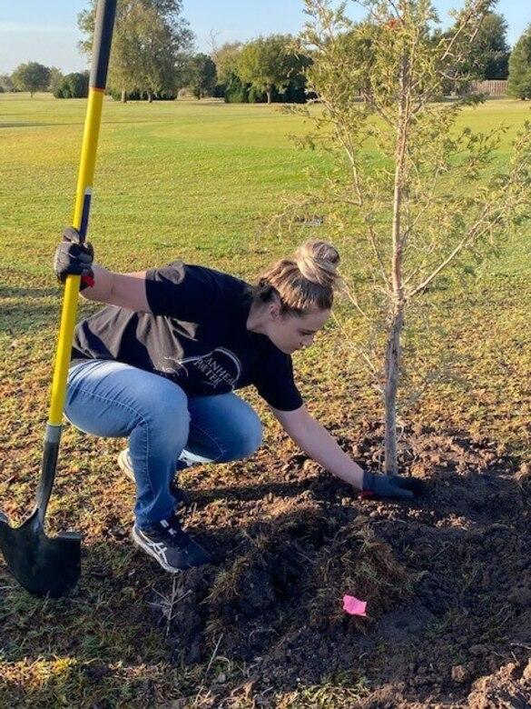 woman plants tree