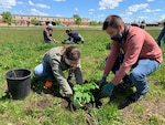 The Defense Supply Center Columbus Installation Management Team planted 50 tree saplings at the DSCC MWR Sports Park this summer.