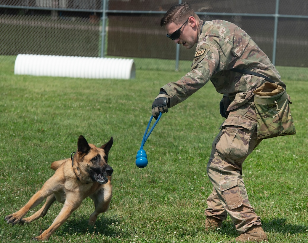 Tech. Sgt. William Sims, 88th Security Forces Squadron military working dog handler, works with Misha on July 14 during a demonstration for Leadership Dayton program members at Wright-Patterson Air Force Base. Sims talked to the group about the kennel's training techniques and MWD mission. (U.S. Air Force photo by R.J. Oriez)