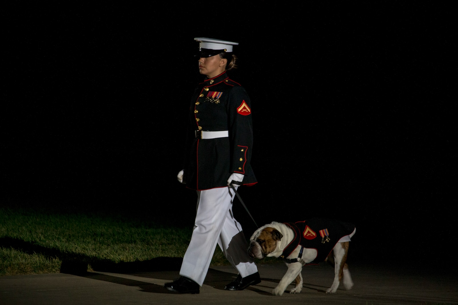 Lance Cpl. Rebecca Tongson, mascot handler, Marine Barracks Washington, walks down Center Walk with the official Marine Corps mascot, Lance Cpl. Chesty XV, during the Friday Evening Parade at MBW, July 23, 2021.