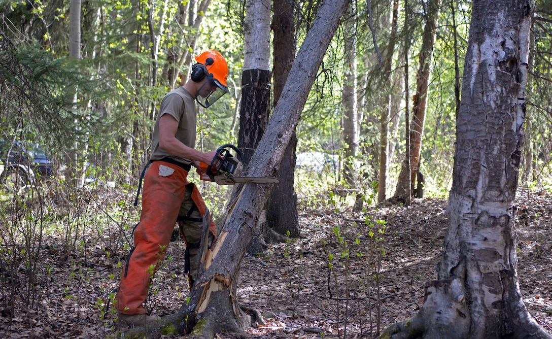 A U.S. Air Force Airman assigned to the 354th Civil Engineer Squadron cuts a dead tree down during a troop training project May 26, 2021, at the Birch Lake Military Recreation Area, Alaska. The renovations to the area included upgrading eight cabins, grading roads, trimming trees, repainting and staining the main building, and installing new fire pits. (U.S. Air Force photo by Senior Airman Beaux Hebert)