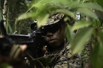 U.S. Marine Corps Cpl. Ray Pineda, a rifleman with 3d Battalion, 3d Marines, engages the enemy during Jungle Warfare Exercise in the Northern Training Area on Okinawa, Japan, May 26, 2021. This unscripted force-on-force exercise tested and strengthened the Marines' ability to operate within distributed jungle and littoral environments, while adapting to a thinking peer-level adversary. 3/3 is forward-deployed in the Indo-Pacific under 4th Marines, 3d Marine Division, as a part of the Unit Deployment Program. Pineda is a native of Los Angeles, California.