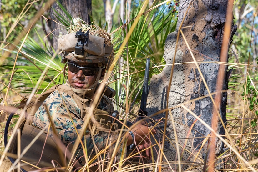 A Marine in camo and gear crouches near trees nd shrubs.