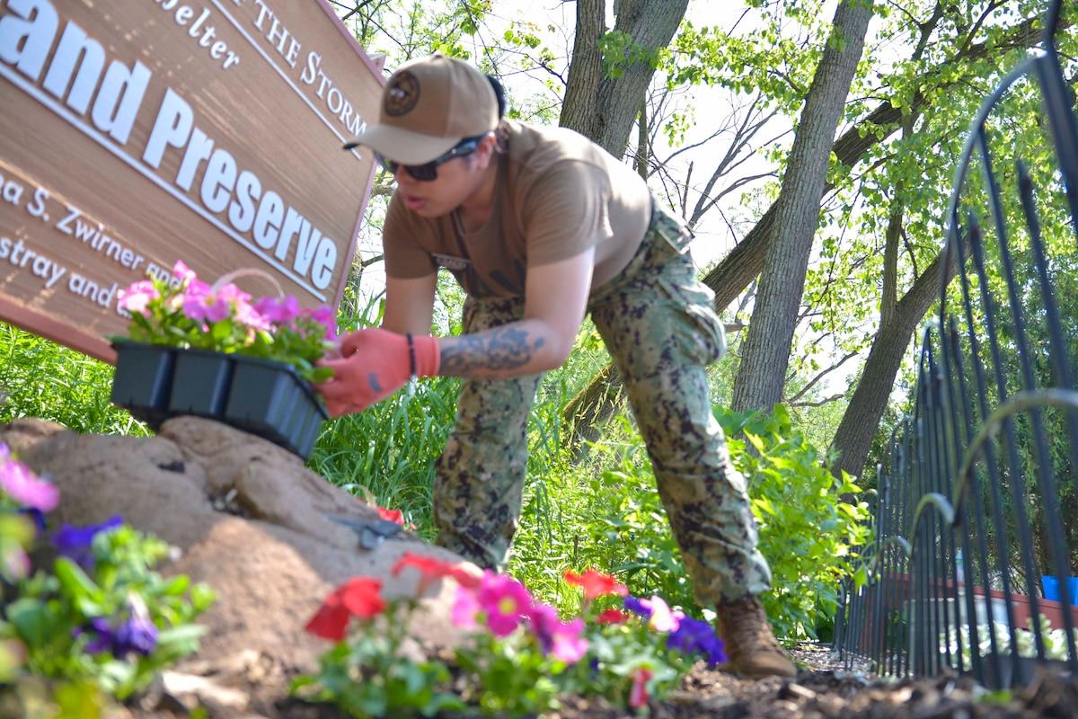 A sailor plants flowers into dirt.