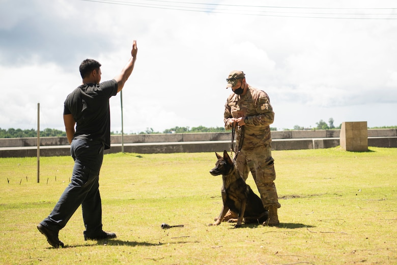 U.S. Air Force Staff Sgt. Casey Wheatley, 736th Security Forces Squadron non-commissioned officer in charge of the military working dog operations, teaches a member of Palau's Ministry of Justice how to handle a working dog during a Mobile Training Team mission in Palau, June 23, 2021. A Mobile Training Team of subject matter experts from Andersen AFB went to teach members from the Ministry of Justice and Ministry of Public Infrastructure and Institution in Palau how to properly utilize equipment they received from the Department of Defense through 333 Funding Authority. (U.S. Air Force photo by Senior Airman Aubree Owens)