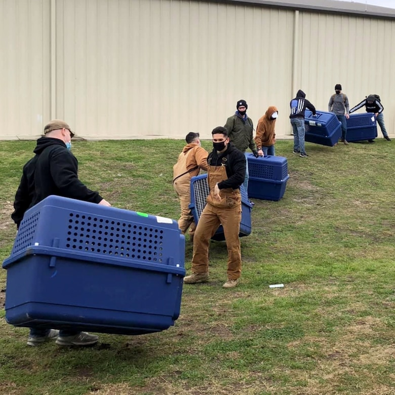 Approximately 300 volunteers helped move over 800 military working dogs to safety during a winter storm in the San Antonio area the week of Feb. 15, 2021.