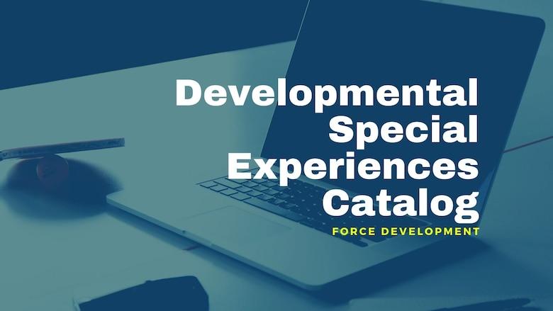 Graphic highlighting Developmental Special Experiences Catalog.