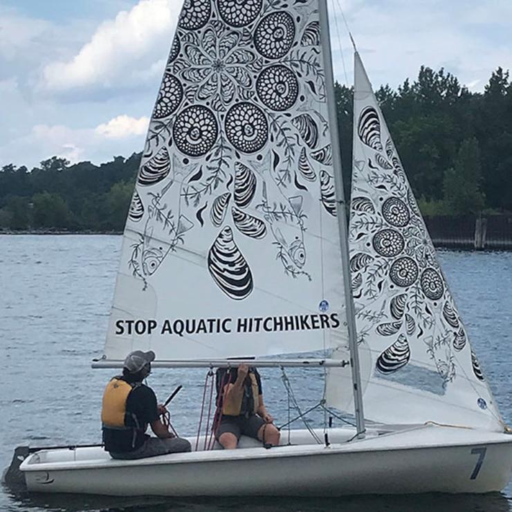 Stop Aquatic Hitchhikers Art Sail