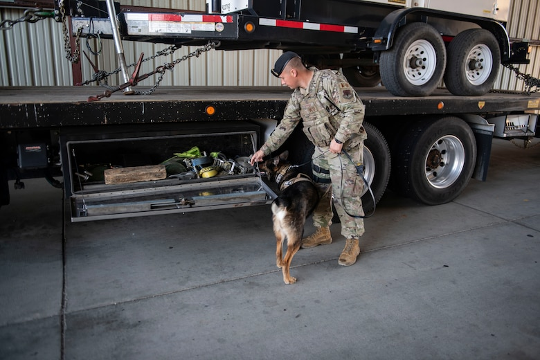 Staff Sgt. Jason Herrier, 9th Security Forces Squadron (SFS) military working dog (MWD) handler and Bady 2, 9th SFS MWD search commercial vehicles coming on Beale Air Force Base.