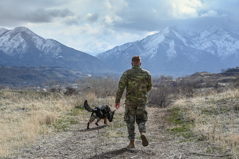 Staff Sgt. Patrick Cushing, a military working dog handler with the 75th Security Forces Squadron, and MWD Jimo during explosive device detection training March 10, 2021, at Hill Air Force Base, Utah.(U.S. Air Force photo by Cynthia Griggs)