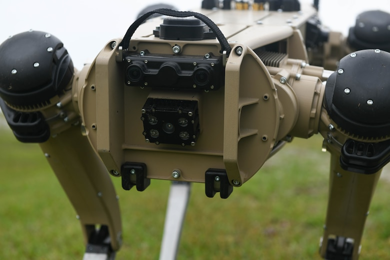 Pictured is a robot dog.