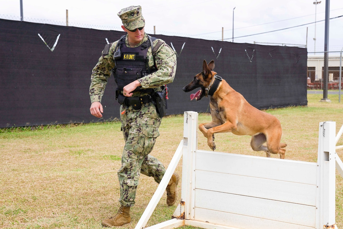 A sailor runs next to a dog jumping over an obstacle.