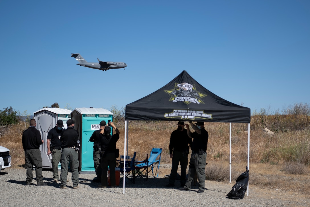 K-9 officers stand and watch a plane flying