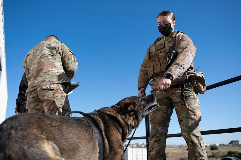 Airmen gives dog a toy