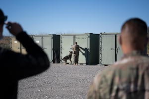 Airmen and dog search container