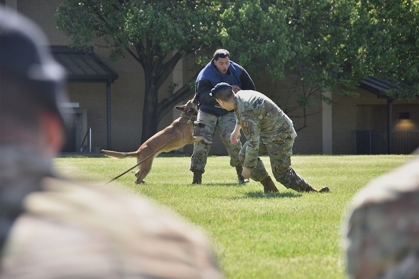 Staff Sgt. Mark Graham, right, and Senior Airman Emanuel Enos, 316th Security Support Squadron military working dog handlers, perform a K-9 demonstration during National Police Week, May 11, 2021, at Joint Base Andrews, Md. National Police Week was established by Congress in 1962 to honor members of law enforcement who lost their lives in the line of duty. JBA celebrated National Police Week with a 5k run and ruck march, security forces demonstrations, bowling, a cornhole tournament, softball games and a barbecue. (U.S. Air Force photo by Senior Airman Daniel Brosam)
