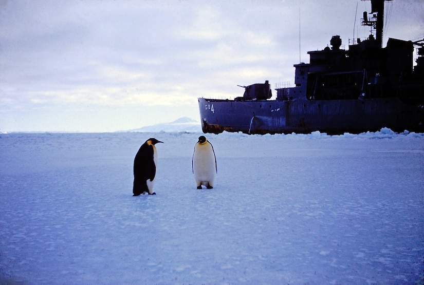 Two penguins stand several yards from an ice-breaker ship.