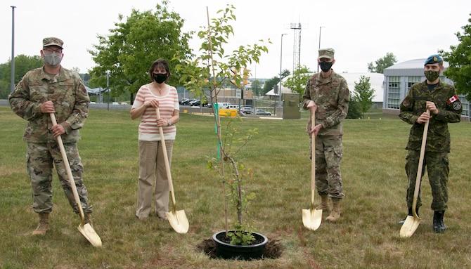 9/11 Survivor Tree seedling planted at EADS