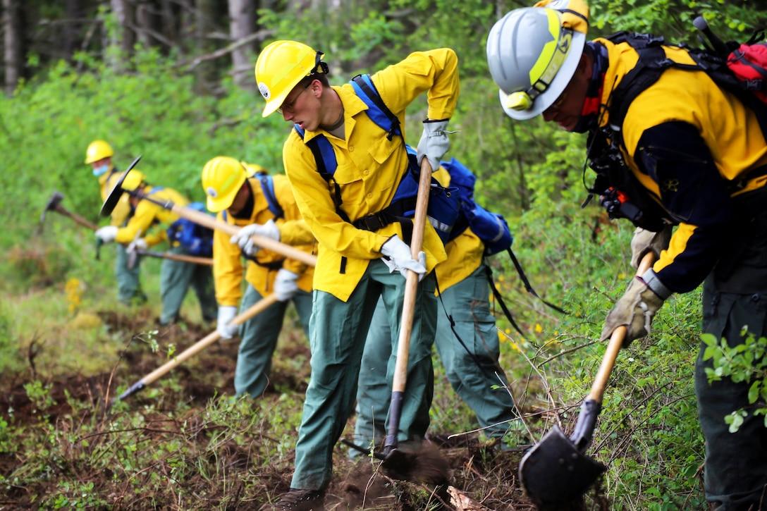 Guardsmen use shovels to dig up dirt in a forest.