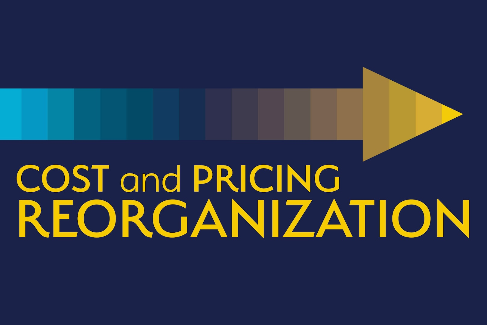 Cost and Pricing Reorganization