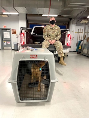 TSgt. Frank Padeway poses with a dog.