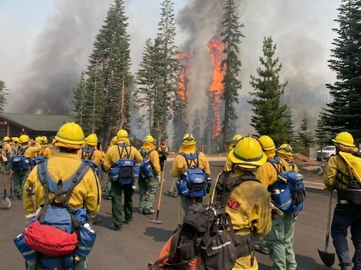 Trees burn within eyesight of a California National Guard hand crew with Joint Task Force 578 during the Dixie Fire in Northern California Aug. 16, 2021. The task force is part of the mutual aid system in support of CAL FIRE.