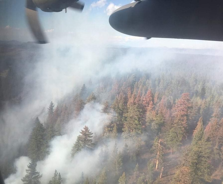 An aerial view of a smoky forest with a line of fire retardant covering a segment of trees.