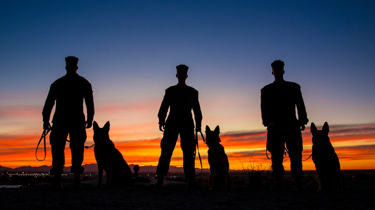 Three military dog handlers stand with three dogs, shown in silhouette.