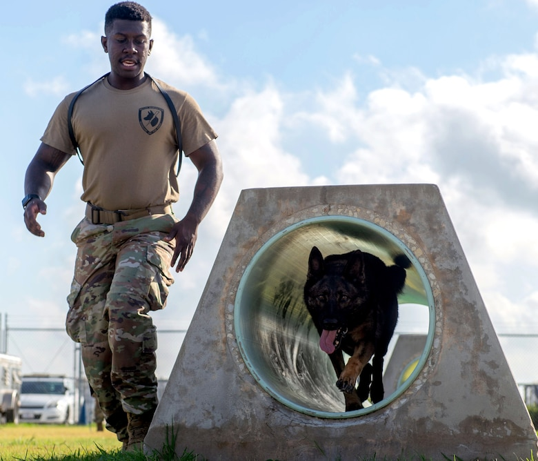 U.S. Air Force Senior Airman Keilen Evans, 902nd Security Forces Squadron military working dog handler, follows his MWD to the end of a tunnel during a training exercise
