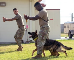 U.S. Air Force Senior Airman Keilen Evans (right), a military working dog handler, performs MWD training by mimicking the motions of Tech. Sgt. Mark Devine