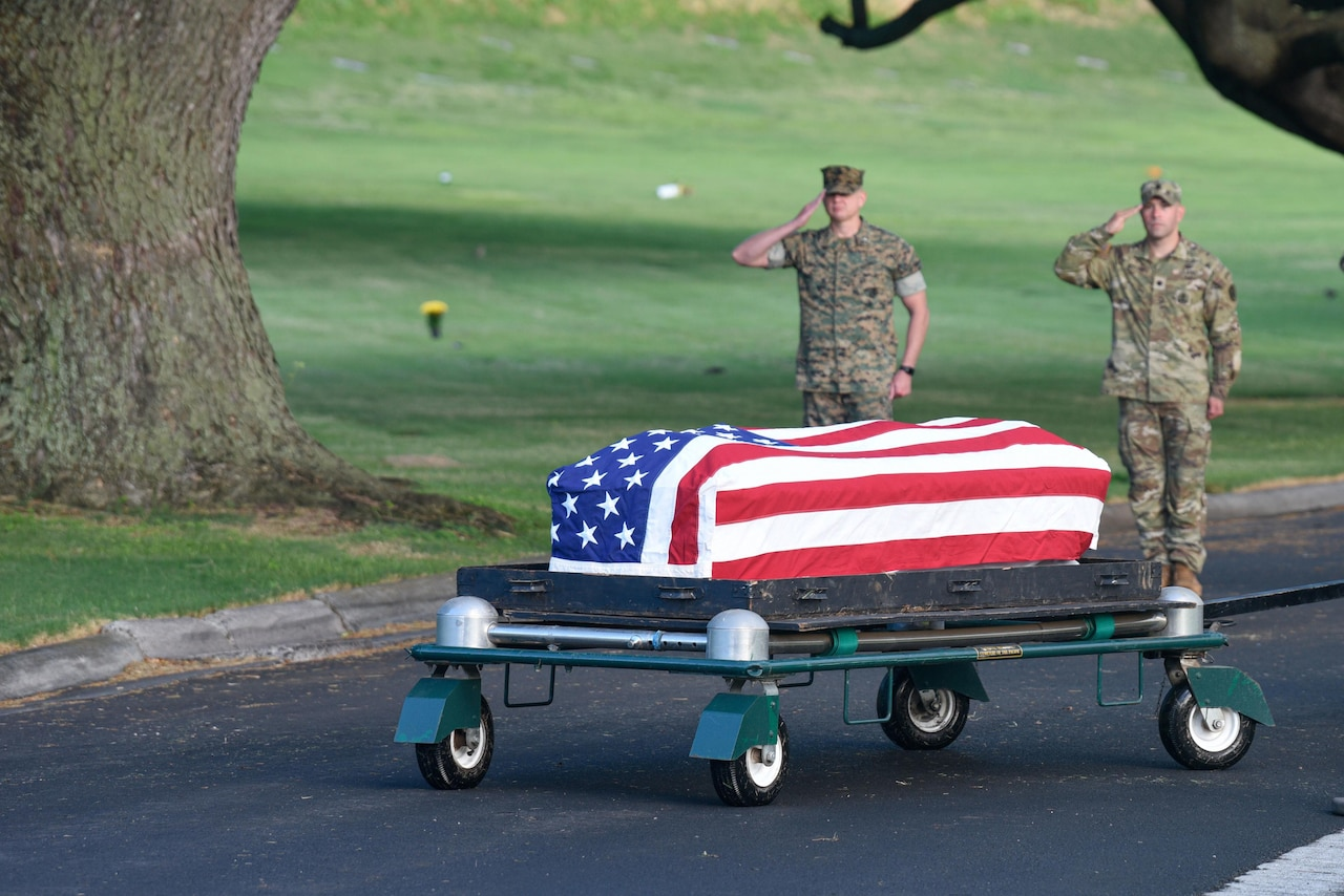 Troops salute as flag-draped coffin passes.