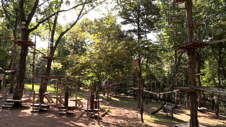 The hot summer sun pours over the treetops at the Adventure Park in Nashville, Tennessee as LDP II participates get ready to tackle their final challenge before graduation.